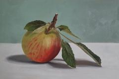 Studie van een appel uit eigen tuin
